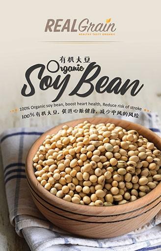 REALGrain Organic Soy Bean 有机大豆